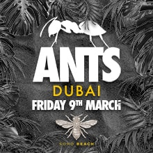 Soho Beach DXB Presents: Ants