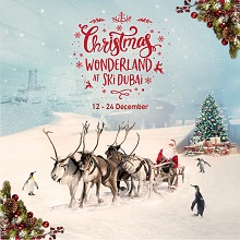 Christmas Wonderland at Ski Dubai